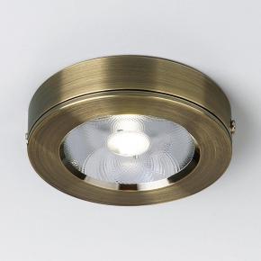 Потолочный светодиодный светильник Elektrostandard DLS030 бронза 4690389158018