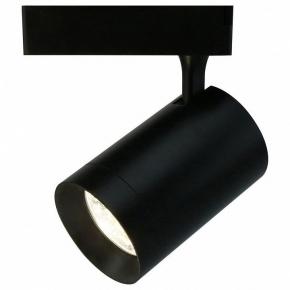 Потолочный светильник Arte Lamp 1730 A1730PL-1BK