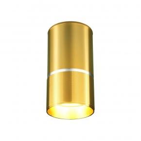 Потолочный светильник Elektrostandard DLN106 GU10 золото 4690389148613
