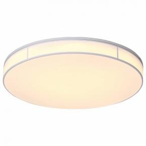 Потолочный светодиодный светильник ST Luce Fella SL417.512.01