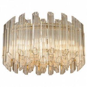 Подвесной светильник L'Arte Luce  L23209.92