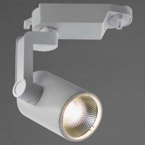 Потолочный светильник Arte Lamp 2310 A2310PL-1WH