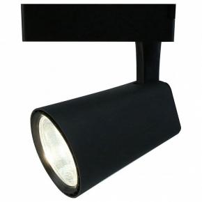 Потолочный светильник Arte Lamp 1830 A1830PL-1BK