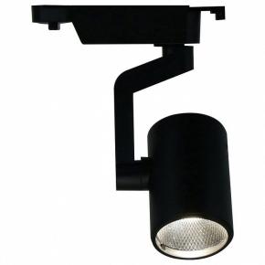 Потолочный светильник Arte Lamp 2310 A2310PL-1BK