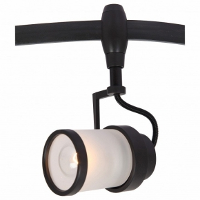 Потолочный светильник Arte Lamp 3056 A3056PL-1BK