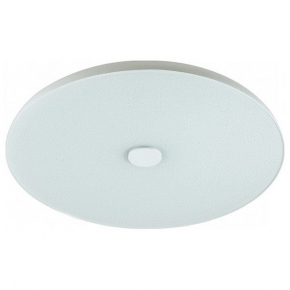 Потолочный светодиодный светильник Sonex Roki Muzcolor 4629/CL