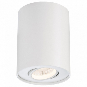 Потолочный светодиодный светильник Paulmann Premium Line 92690