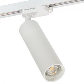 Трековый светильник Denkirs DK6203-WH