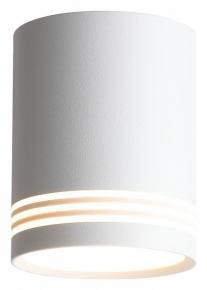 Потолочный светодиодный светильник ST Luce Cerione ST101.502.12