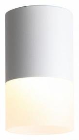 Потолочный светодиодный светильник ST Luce Ottu ST100.502.10