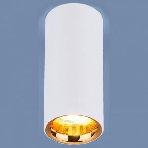 Накладной светильник Elektrostandard DLR030 a040669