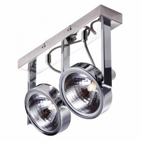 Потолочный светильник Arte Lamp Faccia A4507PL-2CC