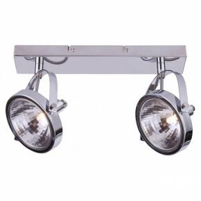 Настенно-потолочный светильник Arte Lamp Alieno A4506PL-2CC
