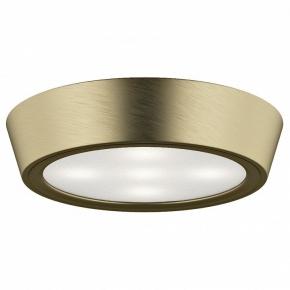 Настенно-потолочный светильник Lightstar Urbano Mini 214712