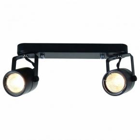 Настенно-потолочный светильник Arte Lamp Lente A1310PL-2BK