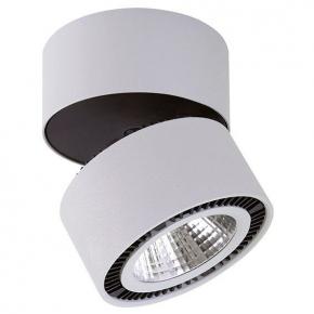 Потолочный светодиодный светильник Lightstar Forte Muro 213859