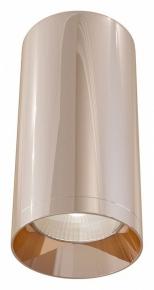 Потолочный светильник Maytoni Alfa C010CL-01RG