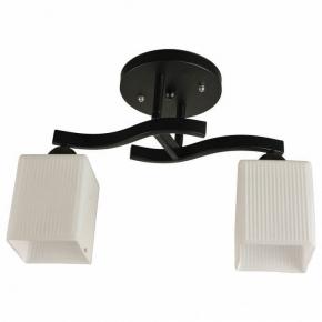 Потолочный светильник Hiper Filla H205-2