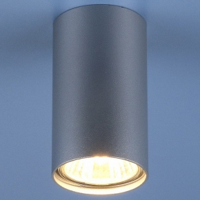Накладной светильник Elektrostandard  a037714