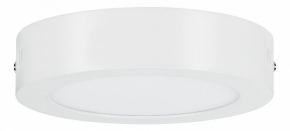 Потолочный светодиодный светильник Paulmann Nox 50008