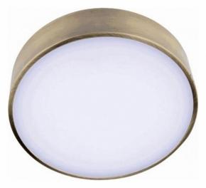 Потолочный светодиодный светильник Aployt Evon APL.0114.29.12