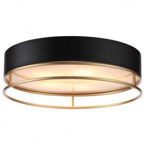 Потолочный светильник ST Luce Chodo SL1127.432.05
