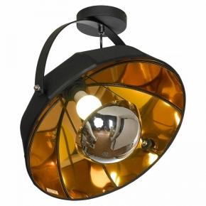 Потолочный светильник Lussole Lgo Klamath LSP-0556-C
