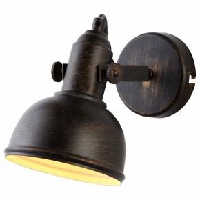 Настенно-потолочный светильник Arte Lamp Martin A5213AP-1BR