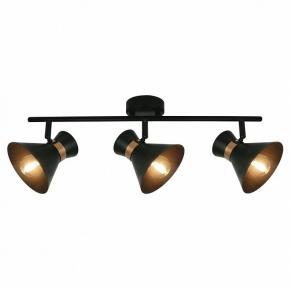 Настенно-потолочный светильник Arte Lamp Baltimore A1406PL-3BK