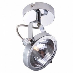 Настенно-потолочный светильник Arte Lamp Alieno A4506AP-1CC