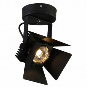 Потолочный светильник Favourite Projector 1770-1U
