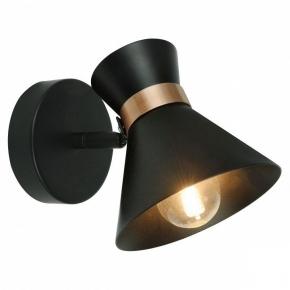 Настенный светильник Arte Lamp Baltimore A1406AP-1BK