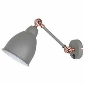 Настенный светильник Arte Lamp Braccio A2054AP-1GY