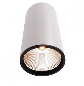 Потолочный светодиодный светильник Ambrella light Techno Spot TN237