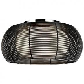 Потолочный светильник Setmo WE220.02.227
