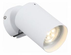 Настенно-потолочный светильник ST Luce Fanale SL597.501.01