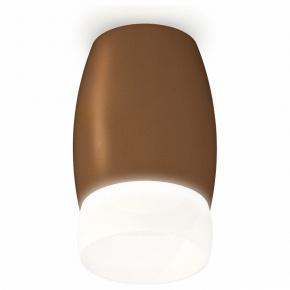 Накладной светильник Ambrella Xs112 XS1124023