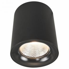 Потолочный светодиодный светильник Arte Lamp Facile A5118PL-1BK