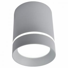 Потолочный светодиодный светильник Arte Lamp A1909PL-1GY