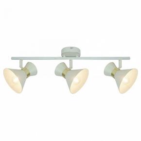 Настенно-потолочный светильник Arte Lamp Baltimore A1406PL-3WG