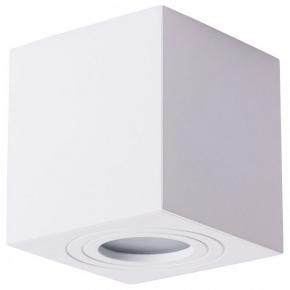 Потолочный светильник Arte Lamp Galopin A1461PL-1WH