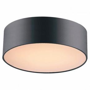 Потолочный светильник Favourite Cerchi 1514-2C1