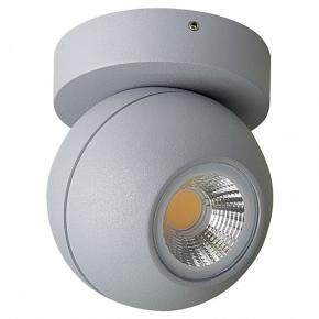 Точечный накладной светильник Lightstar Globo 051009