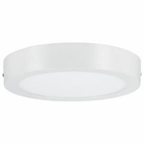 Потолочный светодиодный светильник Paulmann Nox 50009