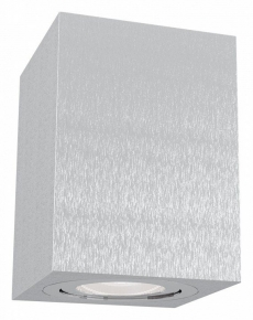 Потолочный светильник Maytoni Alfa C017CL-01S