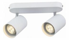 Настенно-потолочный светильник ST Luce Fanale SL597.501.02