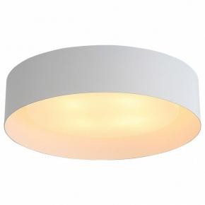 Потолочный светильник ST Luce Chio SL392.502.04