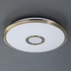 Потолочный светодиодный светильник Citilux СтарЛайт Смарт CL703A33G
