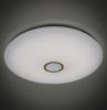 Потолочный светодиодный светильник Citilux Старлайт Смарт CL703A143G